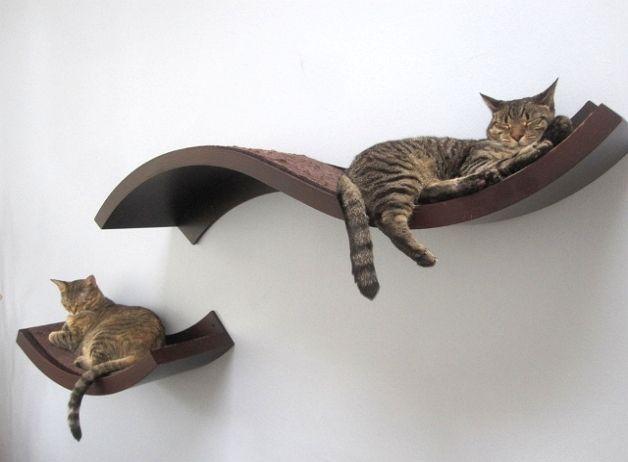 Полки для кошек на лоджии