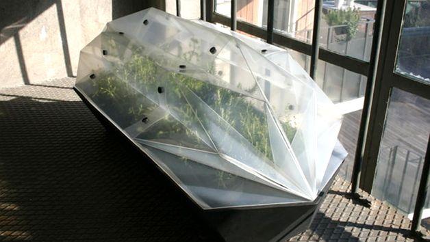 Огород для балкона
